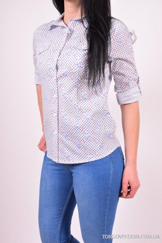 Рубашка женская (цв.белый) Madoy (Cotton 70%,Elastane 4%,Nylon 26%) Размеры в наличии : 42,44,46,48 арт.2021