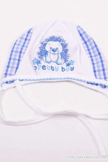 Чепчик для мальчика от 0 до 3 мес. David&s Star (Cotton 100%) арт.16158