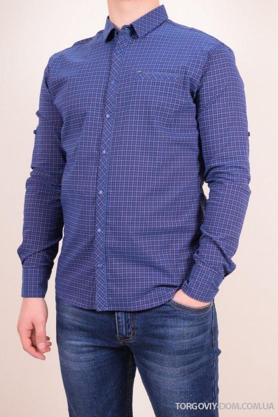 Рубашка мужская котоновая (цв.т.синий/коричневый) Stendo Размеры в наличии : 46,48,50,52 арт.15-502