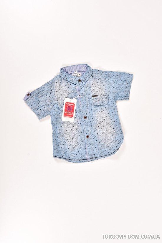 Шведка для мальчика котоновая (цв.голубой) Роста в наличии : 92,98,104,110 арт.7719