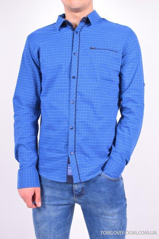 Рубашка мужская котоновая (цв.т.синий) Stendo Размеры в наличии : 46,48,50,52 арт.15-502